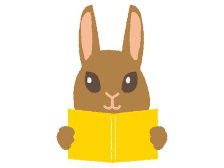 A rabbit reading books