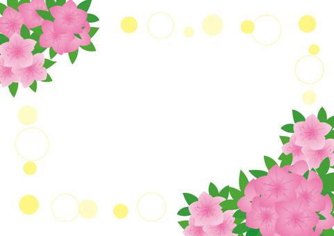 Azalea frame