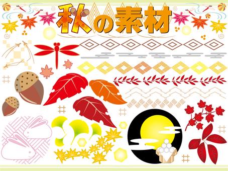 Autumn Material 01