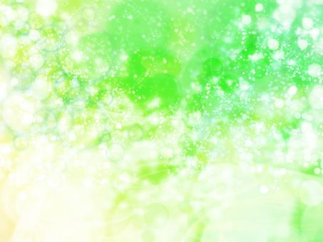 초여름의 색상