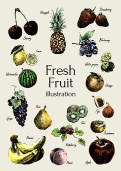 Illustration of fresh fruit