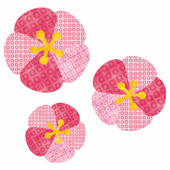 Plum blossom / Japanese pattern
