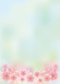 Blooming flowers 253