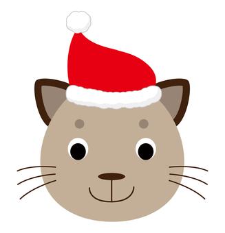 Cat wearing a Santa cap