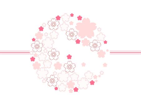 Sakura 43