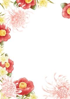 Chrysanthemum, camellia and daffodil