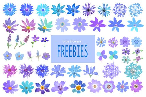 꽃 블루 소재