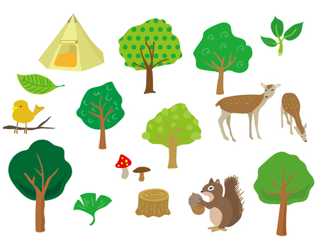 Forest illustration