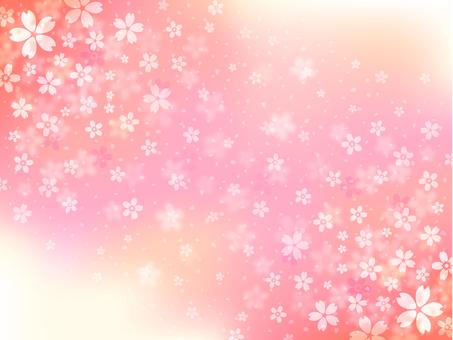 Sakuraguki [3]