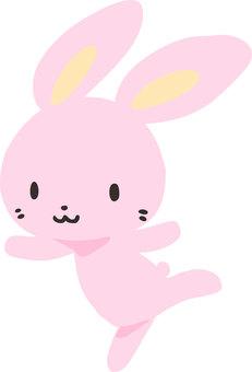 춤추는 토끼