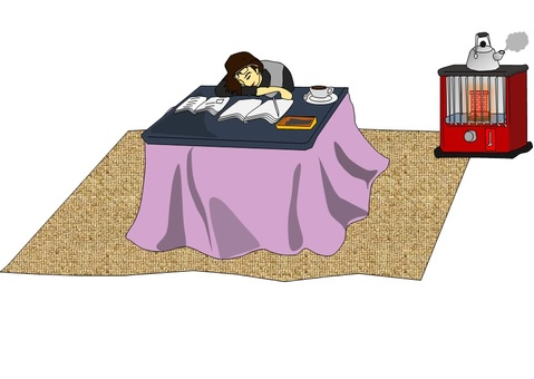 A woman who fell asleep with a kotatsu 3
