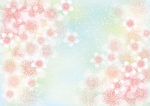 벚꽃의 꽃 151