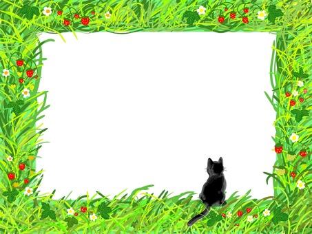 Wild grass frame series (black cat version)