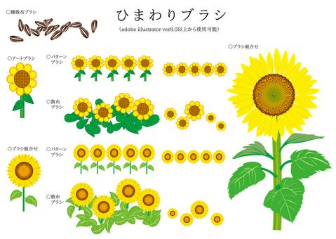 Brush series Sunflower