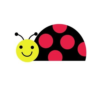 Landing ladybird