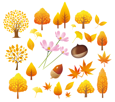 秋の木の葉と樹木のセット