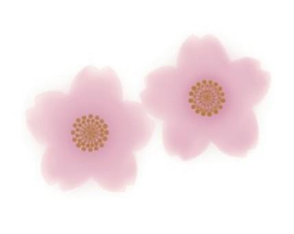 벚꽃 (수채화 화풍)