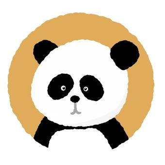 Panda ②