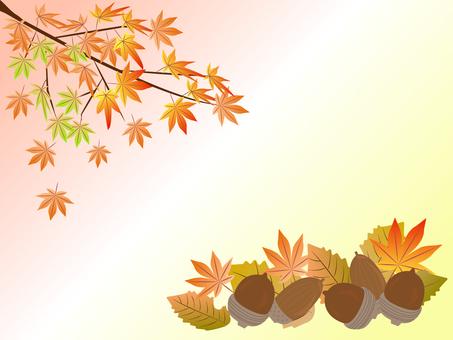 Autumn leaves and acorns