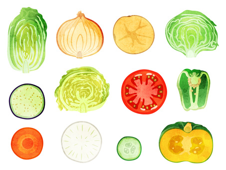 Foodstuff_Vegetable_Set (Section) 1_ Watercolor