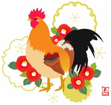 닭 소재 09
