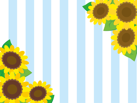Sunflower and stripes (light blue)