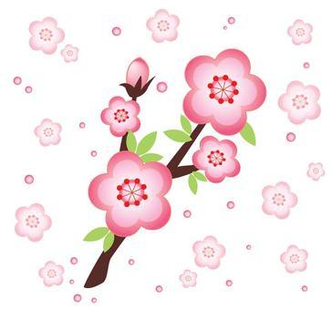 梅桜 나무
