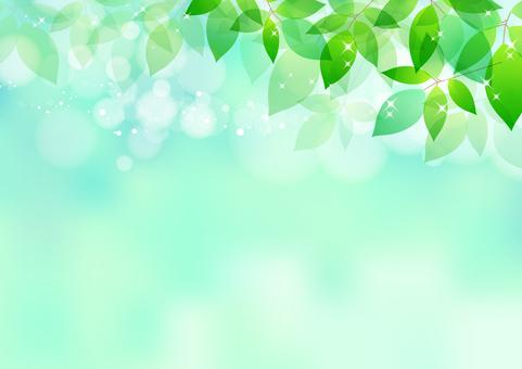 Fresh green material 176