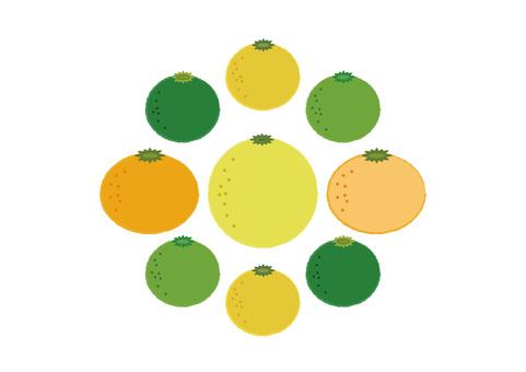 citron citrus 2