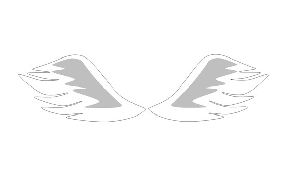 Angel's feathers
