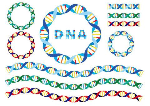 DNA spiral line brush