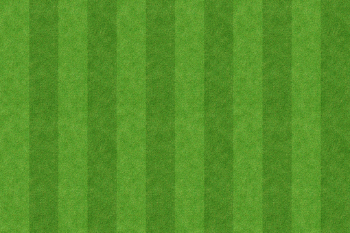 잔디 배경 4
