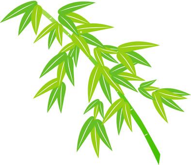 Bamboo leaves Tanabata