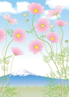 Cosmos _ Mt. Fuji _ vertical size