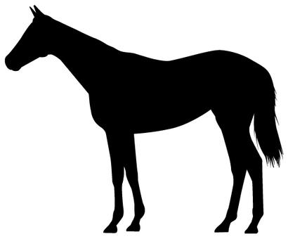Horse-Silhouette_01