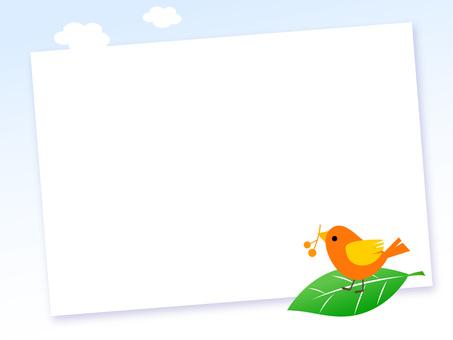 17. 보드 시리즈 작은 새