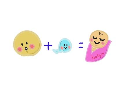 Egg + sperm = baby