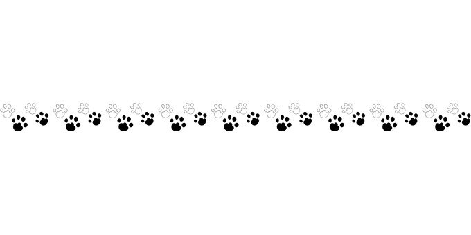 Footprint line
