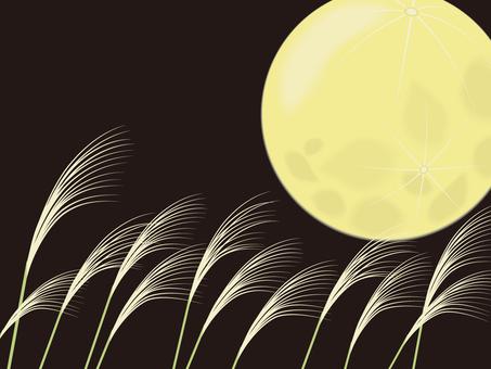 沖洗和月亮