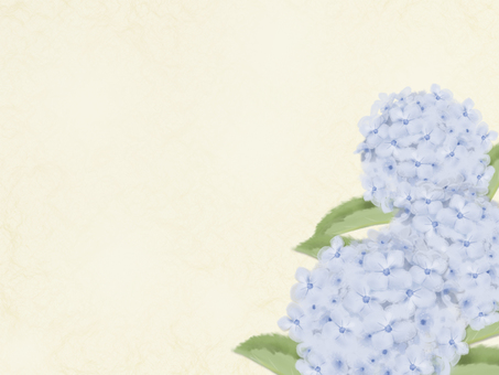 Hydrangea in brush painting