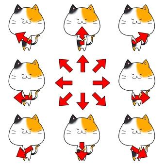Arrow cat summary