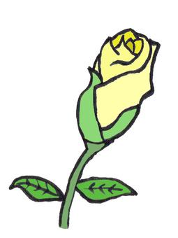 Bud of rose (yellow)