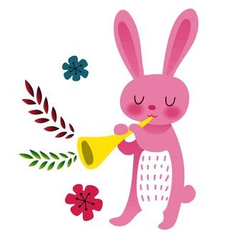 兔子和小號
