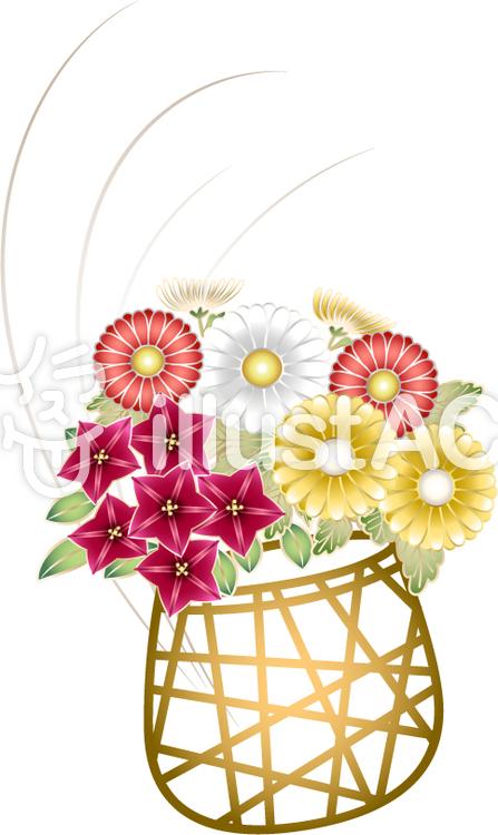 菊と桔梗の花かごイラスト No 152353無料イラストならイラストac