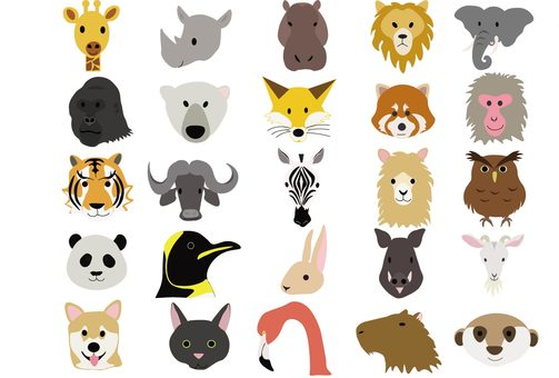 25 animals