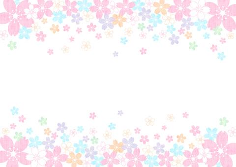 Sakura _ up and down _ pastel_ background 1863