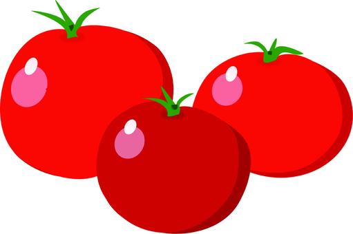 Vegetable Petit Tomato 1