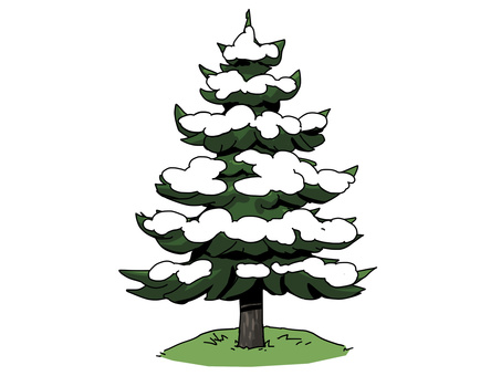 Fir tree (snow)