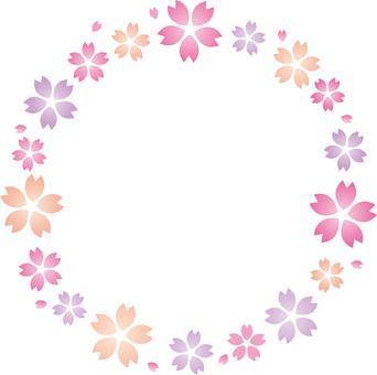 봄의 벚꽃의 꽃잎 프레임 ☆ 벚꽃의 꽃잎의 고리