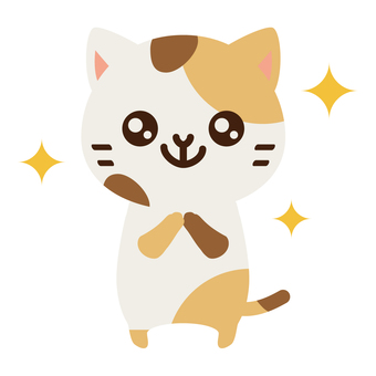 Sparkling Cat